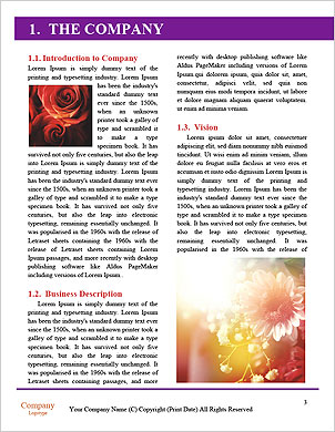 0000092474 Word Template - Page 3