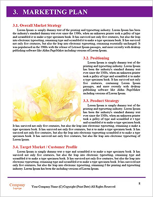 0000092474 Word Template - Page 8