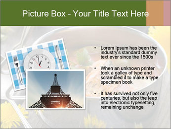 Picnic PowerPoint Template - Slide 20