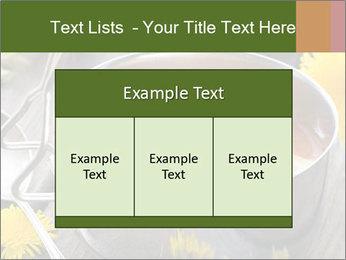 Picnic PowerPoint Templates - Slide 59