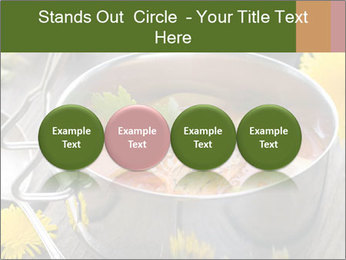 Picnic PowerPoint Template - Slide 76
