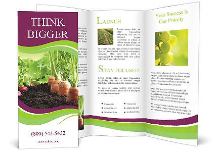 0000092479 Brochure Templates