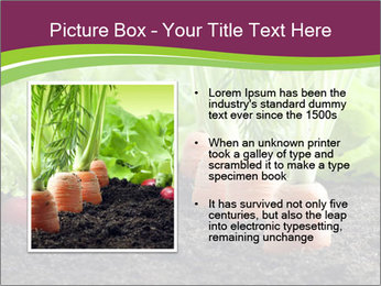 Vegetables PowerPoint Template - Slide 13