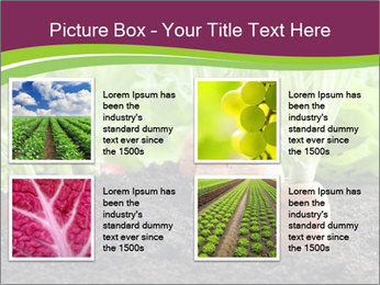 Vegetables PowerPoint Template - Slide 14