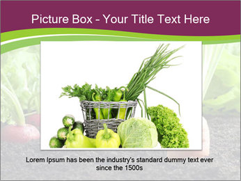 Vegetables PowerPoint Templates - Slide 15