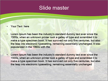 Vegetables PowerPoint Template - Slide 2