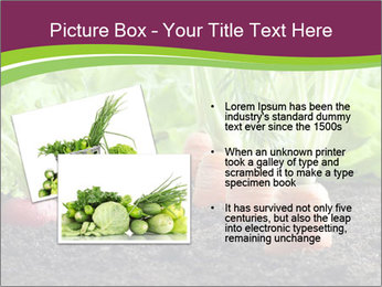 Vegetables PowerPoint Template - Slide 20