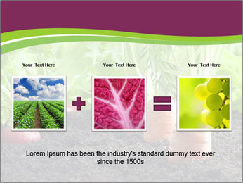 Vegetables PowerPoint Template - Slide 22