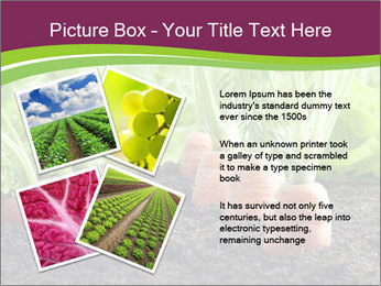 Vegetables PowerPoint Templates - Slide 23