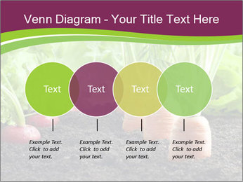 Vegetables PowerPoint Templates - Slide 32