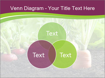 Vegetables PowerPoint Template - Slide 33