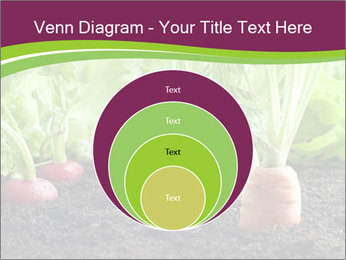 Vegetables PowerPoint Template - Slide 34