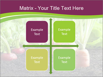 Vegetables PowerPoint Template - Slide 37