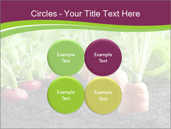 Vegetables PowerPoint Templates - Slide 38