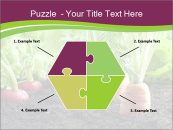 Vegetables PowerPoint Template - Slide 40
