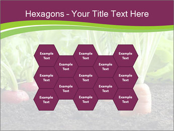 Vegetables PowerPoint Template - Slide 44