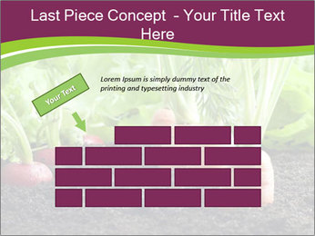 Vegetables PowerPoint Templates - Slide 46