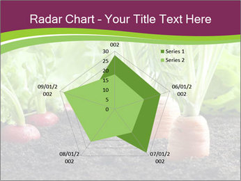 Vegetables PowerPoint Templates - Slide 51