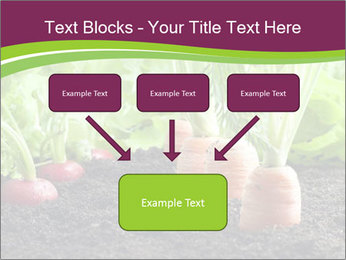 Vegetables PowerPoint Template - Slide 70