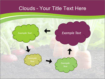 Vegetables PowerPoint Templates - Slide 72