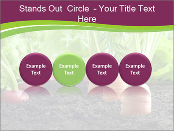 Vegetables PowerPoint Template - Slide 76