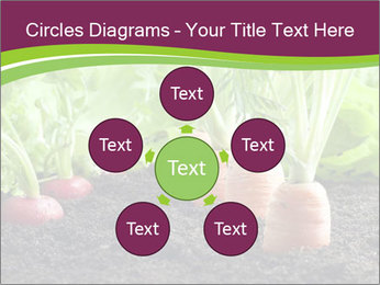 Vegetables PowerPoint Templates - Slide 78