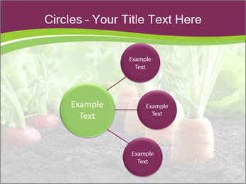 Vegetables PowerPoint Templates - Slide 79