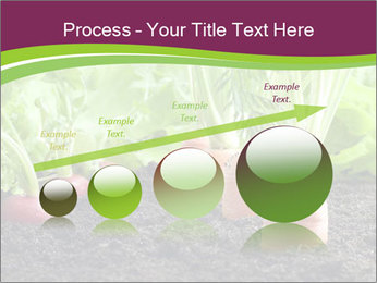 Vegetables PowerPoint Template - Slide 87