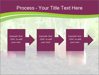 Vegetables PowerPoint Template - Slide 88
