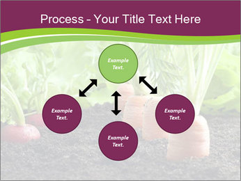 Vegetables PowerPoint Template - Slide 91