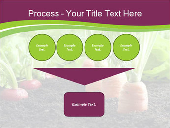 Vegetables PowerPoint Templates - Slide 93