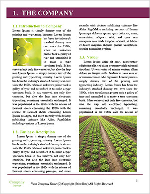 0000092479 Word Template - Page 3