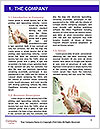 0000092486 Word Template - Page 3