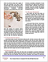 0000092486 Word Template - Page 4