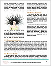 0000092491 Word Template - Page 4