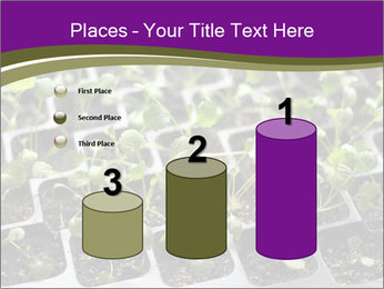 Tomatoes in soil PowerPoint Template - Slide 65