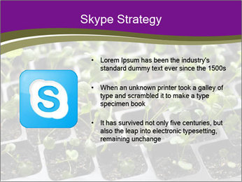 Tomatoes in soil PowerPoint Template - Slide 8