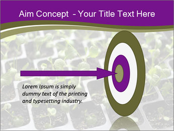 Tomatoes in soil PowerPoint Template - Slide 83