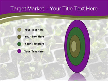 Tomatoes in soil PowerPoint Template - Slide 84