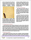 0000092502 Word Template - Page 4