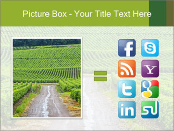 Vineyards in Champagne PowerPoint Template - Slide 21