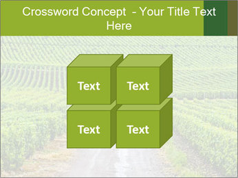 Vineyards in Champagne PowerPoint Template - Slide 39