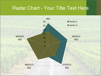 Vineyards in Champagne PowerPoint Template - Slide 51