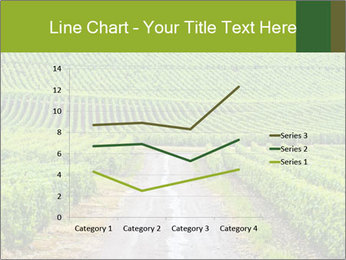 Vineyards in Champagne PowerPoint Template - Slide 54