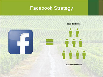 Vineyards in Champagne PowerPoint Template - Slide 7