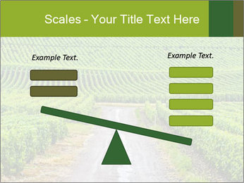 Vineyards in Champagne PowerPoint Template - Slide 89