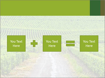 Vineyards in Champagne PowerPoint Template - Slide 95