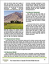 0000092508 Word Template - Page 4
