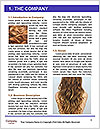 0000092529 Word Template - Page 3