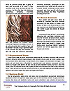 0000092529 Word Template - Page 4